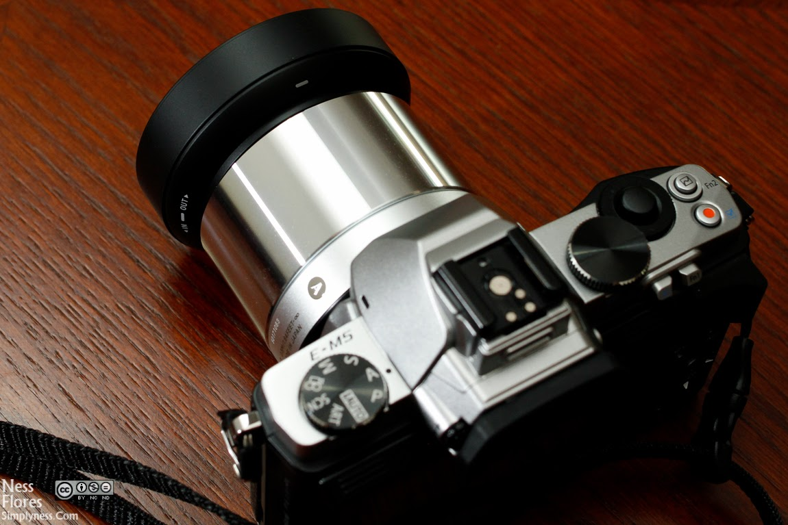 sigma 60mm f 2.8 dn review